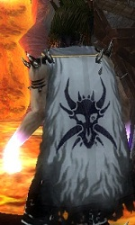 Guild The Deathh Warriors cape.jpg