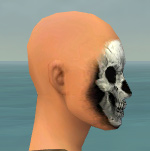 Skeleton Face Paint profile.jpg