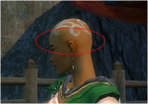 User LunarEffect Female Monk Bug.jpg