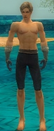 Elementalist Norn armor m gray front arms legs.jpg