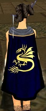 Guild Angel Sharks cape.jpg
