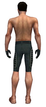 Mesmer Rogue armor m gray back arms legs.png