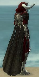 Grenth's Regalia costume f dyed right.jpg