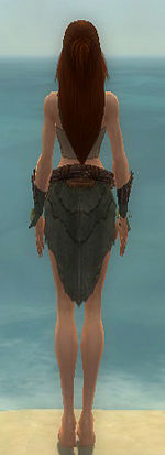 Ranger Elite Druid armor f gray back arms legs.jpg