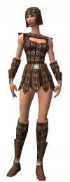 Warrior Ascalon armor f.jpg
