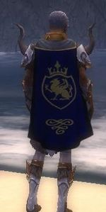 Guild Risen Heroes Of The Apocalypse cape.jpg