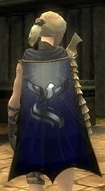 Guild Wanton Nomads Cape.jpg