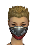 Assassin Monument Mask f gray front.png