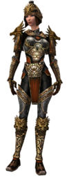 Warrior Elite Canthan armor f.jpg