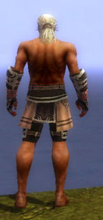Warrior Ancient armor m gray back arms legs.jpg