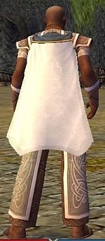 Guild The Obscure Monks cape.jpg