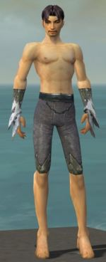 Elementalist Iceforged armor m gray front arms legs.jpg