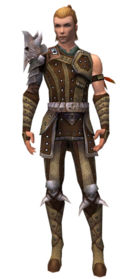 Ranger Elite Studded Leather armor m.jpg