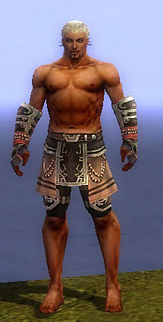 Warrior Ancient armor m gray front arms legs.jpg