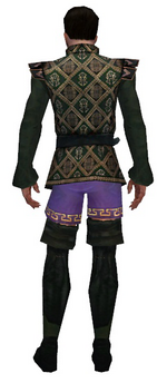 Mesmer Courtly armor m gray back chest feet.png