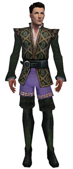 Mesmer Courtly armor m gray front chest feet.png