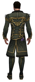 Mesmer Primeval armor m gray back chest feet.png