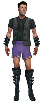 Mesmer Rogue armor m gray front chest feet.png