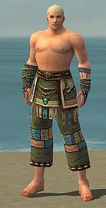 Monk Luxon armor m gray front arms legs.jpg