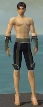 Elementalist Canthan armor m gray front arms legs.jpg