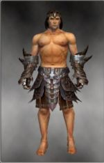 Warrior Monument armor m gray front arms legs.jpg