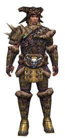 Warrior Charr Hide armor m.jpg