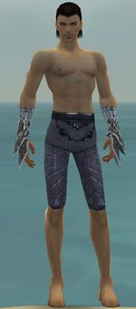 Elementalist Elite Iceforged armor m gray front arms legs.jpg