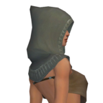 Dervish Sunspear Hood f gray right.png