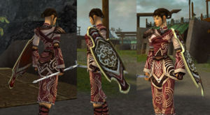 Vabbian Tower Shield female monk.jpg