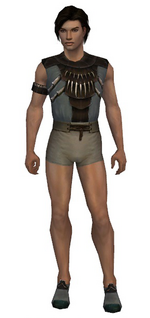 Dervish Primeval armor m gray front chest feet.png