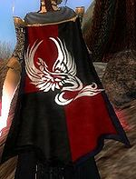 Guild Alliance Of Royal Knights cape.jpg