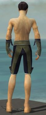 Elementalist Canthan armor m gray back arms legs.jpg