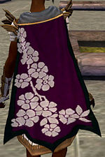 Guild I Have Reverted Your cape.jpg
