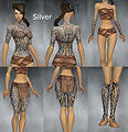 Monk Flowing armor Female Silver overview.jpg