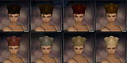 Ranger factions hair color f.jpg