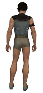 Dervish Primeval armor m gray back chest feet.png