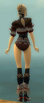 Ritualist Norn armor f gray back chest feet.jpg