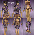 Monk Flowing armor Female Purple overview.jpg
