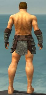 Warrior Krytan armor m gray back arms legs.jpg
