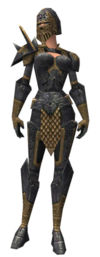 Warrior Elite Platemail armor f.jpg