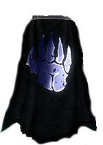 Guild Band Of Thee Blue Hand cape.jpg