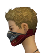 Assassin Monument Mask f gray left.png