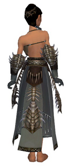 Dervish Primeval armor f gray back arms legs.png