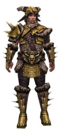 Warrior Elite Charr Hide armor m.jpg