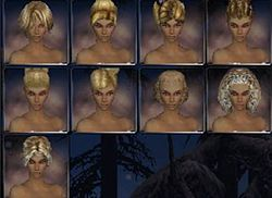 Elemental nightfall hair style f.jpg