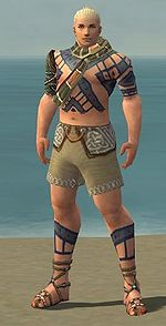 Monk Luxon armor m gray front chest feet.jpg