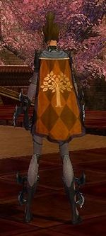 Guild Order Of The Bunny cape.jpg