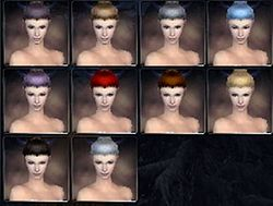 Elemental prophecies hair color f.jpg