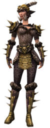 Warrior Elite Charr Hide armor f.jpg