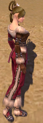 Monk norn armor f dyed right.png